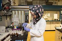 09 APR 2013, DOHA/QATAR<br /> Eine Studentin mit Kopftuch und Laborkittel in einem Labor , einer der Universitaeten von Doha,Texas A&M University at Qatar, Chemical Engineering, Education City, Doha<br /> IMAGE: 20130409-01-038<br /> KEYWORDS: Katar, Frauen, Bildung, Universität, Arabien, Education, Arabia, Islam