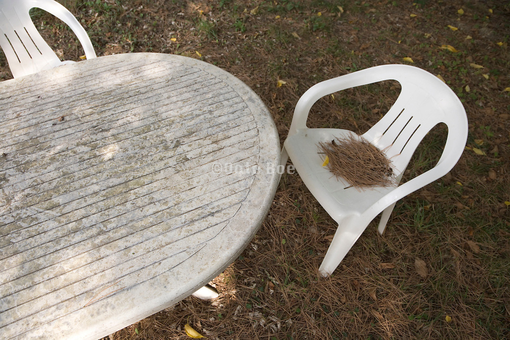 plastic garden furniture on a sunny autumn day with pine needles on the chair
