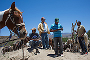 Unofficial tour guides line the banks of the Rio Grande River to offer their services to visitors from Big Bend National Park. Visitors can walk the three-quarters of a mile into Boquillas or ride a donkey, horse, or truck for five to eight dollars.
