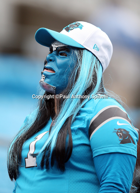 A Carolina Panthers sports a black and blue face mask, team cap and jersey, and black and blue hair as she cheers during the Carolina Panthers 2015 NFL week 3 regular season football game against the New Orleans Saints on Sunday, Sept. 27, 2015 in Charlotte, N.C. The Panthers won the game 27-22. (©Paul Anthony Spinelli)