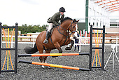 09 - 02nd Jul - Show Jumping