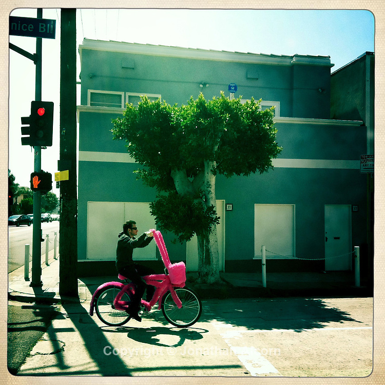Art bicycle featuring fake pink fur on North Venice Blvd in Venice