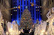 The Rockefeller Center Christmas Tree is lit at the 83rd Annual Rockefeller Center Christmas Tree Lighting Ceremony, Wednesday, Dec. 2, 2015 in New York. (Photo by Diane Bondareff/Invision for Tishman Speyer/AP Images)