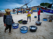 03 AUGUST 2017 - KUTA, BALI, INDONESIA:  A woman sells fish caught overnight by villagers who live along Jimbrana Beach in Kuta. The beach is close to the airport and a short drive from other beaches in southeast Bali. Jimbrana was originally a fishing village with a busy local market. About 25 years ago, developers started building restaurants and hotels along the beach and land prices are rising. The new emphasis on tourism is changing the nature of the area but the fishermen are still busy very early in the morning.    PHOTO BY JACK KURTZ