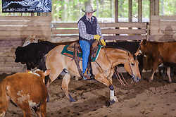 May 20, 2017 - Minshall Farm Cutting 3, held at Minshall Farms, Hillsburgh Ontario. The event was put on by the Ontario Cutting Horse Association. Riding in the 35,000 Non-Pro Class is Don Vincent on Lil Hypnotic owned by the rider.