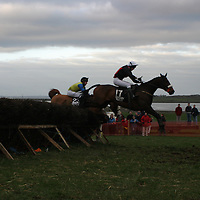Lord of the Light went great over the fences and came in third for  R.J. Tierney during the second round of runners in the last race of the Bellhabour point to point.<br />