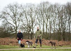 © Licensed to London News Pictures. 21/12/2014. People walk their dogs in an early morning at Richmond park, west London. Today, 21st December, also known as Winter Solstice, is the shortest day in the year. Photo credit : Isabel Infantes / LNP