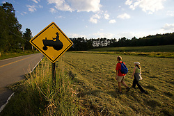 Walking in a field on a farm in Pepperell, Massachusetts. Tractor crossing.