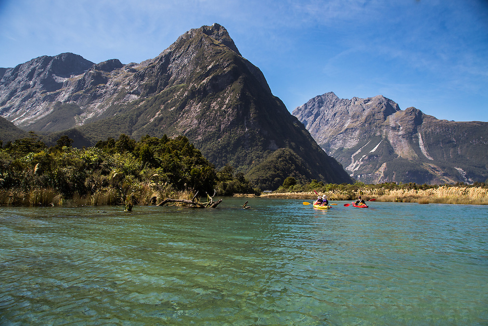 Estuary Wetlands in Milford Sound