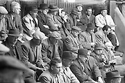Watching the bidding at one of the sales rings at the Dublin Cattle Market..25.04.1962