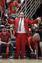 "14 February 2015:   A Redbird super fan with a curtsied seat wearing a red suit complete with red slacks and a red rose stands and asks ""What"" as an official makes a call during an NCAA MVC (Missouri Valley Conference) men's basketball game between the Wichita State Shockers and the Illinois State Redbirds at Redbird Arena in Normal Illinois"