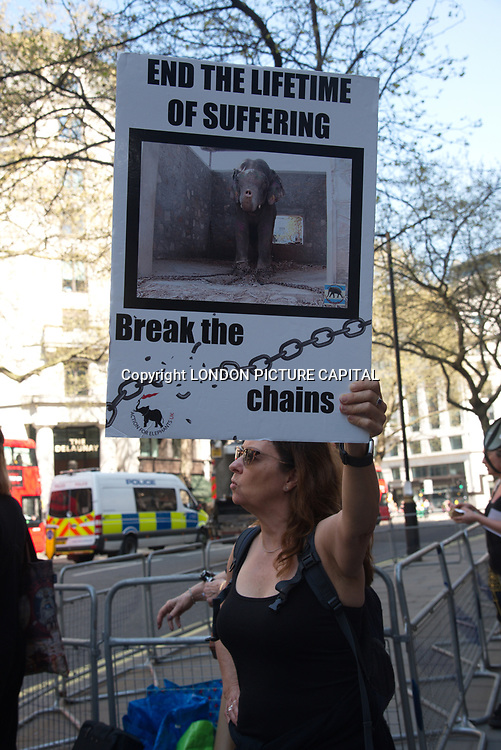 London, UK, 20 April 2018. Noise Protestors, protest against the cruelty to India's temple elephants at Indian High Commission.