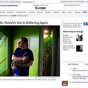 "Screengrab of ""Boom Over, St. Patrick's Isle Is Slithering Again"" published in The New York Times"