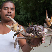 Malcolm was our cook during the kayak expedition. Here he is holding a large male land crab (Discoplax hirtipes) at our second campsite, which was at Ngeremdiu Beach. Malcolm told me that female crabs migrate from land to the water to release their brood at the turning of the high tide during full moon. We saw a few females releasing eggs here at Ngeremdiu Beach, and also at the next campsite on Ngchuus Beach. See separate photos of female crab releasing eggs, and of the resulting zoea.