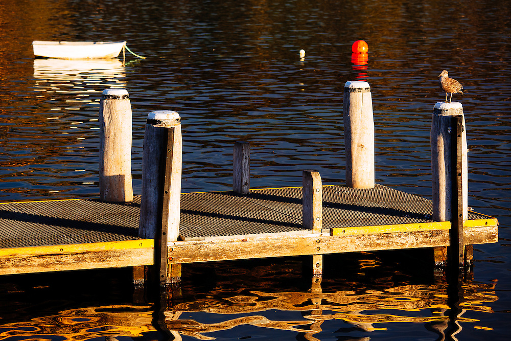 The wooden jetty in the quaint village of Doo Town. Pirate Bay, Tasmania.