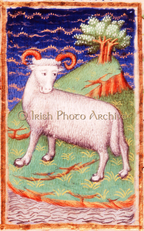 March. Astrological sign of Aries, the Ram.  From the 'Bedford Hours', French 15th century illuminated manuscript.  The wealth of England depended greatly upon the wool from its flocks of sheep and on the cloth woven from their fleeces.