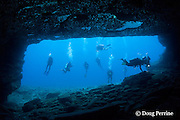 scuba divers at Niihau Arches dive site, off Niihau, Hawaii, USA ( Central Pacific Ocean )