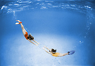 Two snorkellers swim with arms out reached together. Coloured black & white film.