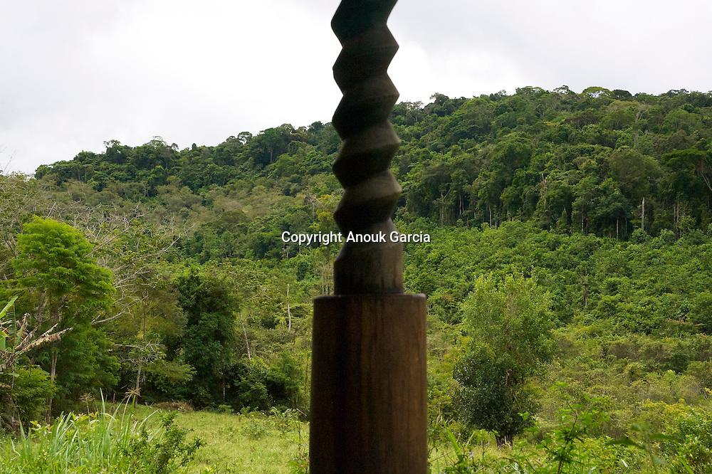 Vue sur la fore?t depuis une ancienne maison a? fabriquer la farine de manioc/Sight on the forest from an old house to manufacture the flour of cassava