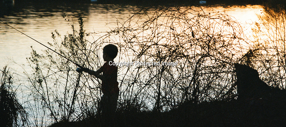 "Silhouette of young boy fishing as sun goes down on lake in Central Texas. NOTE: Click ""Shopping Cart"" icon for available sizes and prices. If a ""Purchase this image"" screen opens, click arrow on it. Doing so does not constitute making a purchase. To purchase, additional steps are required."