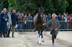 Wilson Nicola, (GBR), Beltane Queen<br /> First Horse Inspection - Mitsubishi Motors Badminton Horse Trials <br /> Badminton 2015