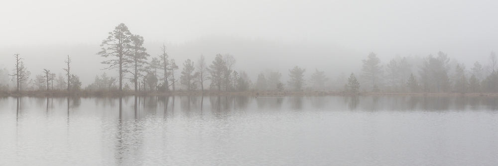 Mist rising over Uath Lochan, Glenfeshie, Scotland - April