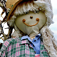 Scarecrow at Annual Great Scarecrow Festival in Mahone Bay, Canada<br /> Mahone Bay in Nova Scotia, Canada is a charming maritime town with less than 1,000 residents that comes alive during their annual scarecrow festival in early October.  There are hundreds of creative scarecrows on the town&rsquo;s streets, including Queen Elizabeth and the Royal family.  Events also include an antique fair and pumpkin carving contest.  It is a tremendous way to spend an autumn afternoon.