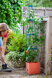 Tomato planter with watering hole reservoir and stand