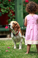 13 July 2008:  Two year old toddler Maya Gabriella Jaramillo plays in the back yard with a 3 year old Basset Beagle K-9 dog while wearing a summer dress.  Mother is caucasion white American woman, father is a Mexican immigrant from Chiapas.  Mutli- Racial Family. This young girl is biracial.