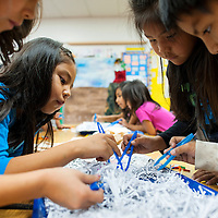 120413       Brian Leddy<br /> Nicole King, left, Shanaya Yazzie and Mackiylest Teengar search through a pile of shredded paper looking for fake worms at David Skeets Elementary school Wednesday. Explora visited the school with a lesson of animal camouflage in nature.