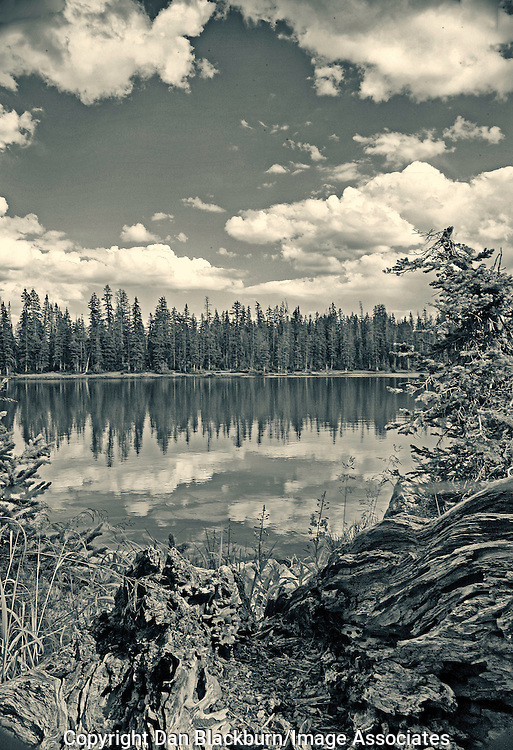 Clouds & Pine Trees Reflected in Shepherd Lake in the Uinta Mountains of Utah.