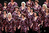 Faultline Chorus