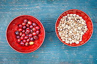 Red bowls on a blue, wooden steps, with sample coffee beans.