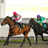 Kempton 20th March 2013