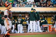 The Oakland Athletics celebrate a run scored by Oakland Athletics shortstop Marcus Semien (10) against the San Francisco Giants at Oakland Coliseum in Oakland, California, on August 1, 2017. (Stan Olszewski/Special to S.F. Examiner)