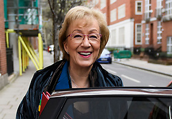 © Licensed to London News Pictures. 20/03/2019. London, UK. Leader of the House of Commons ANDREA LEADSOM is seen leaving her home in Westminster, London. British Prime Minster Theresa May is reportedly due to write to EU leaders to ask for an extension to Article 50 following Parliament's failure to approve the proposed withdrawal agreement. Photo credit: Ben Cawthra/LNP