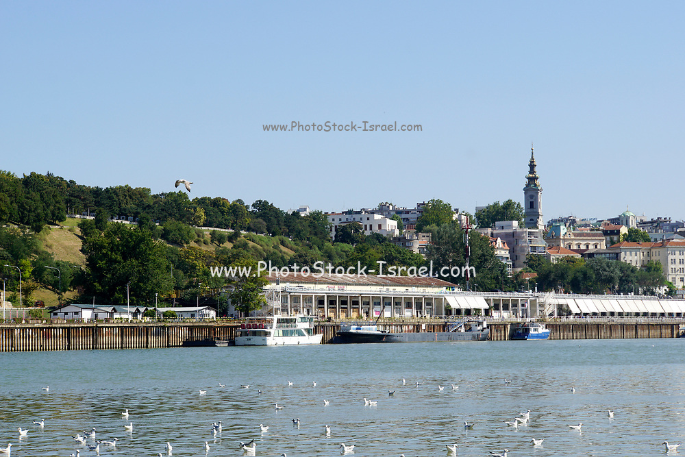 Serbia, Belgrade the Danube river