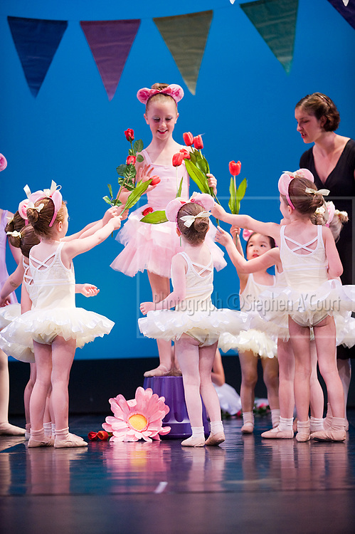 Wellington, NZ. 7.12.2013. Flowers, from the Wellington Dance & Performing Arts Academy end of year stage-show 2013. Little Show, Saturday 10am. Photo credit: Stephen A'Court.  COPYRIGHT ©Stephen A'Court