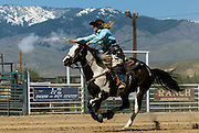 Diane Purecelli, Cowboy mounted shooting champion. The fastest growning sport.