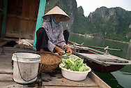 Vietnam, October 2008. Fishermen in Ha Long Bay.  Ha Long Bay is a UNESCO World Heritage site located in Quang Ninh province, Vietnam. The bay features thousands of limestone karsts and isles in various sizes and shapes. Vietnam is an upcoming player in the travel industry. Photo by Frits Meyst/Adventure4ever.com