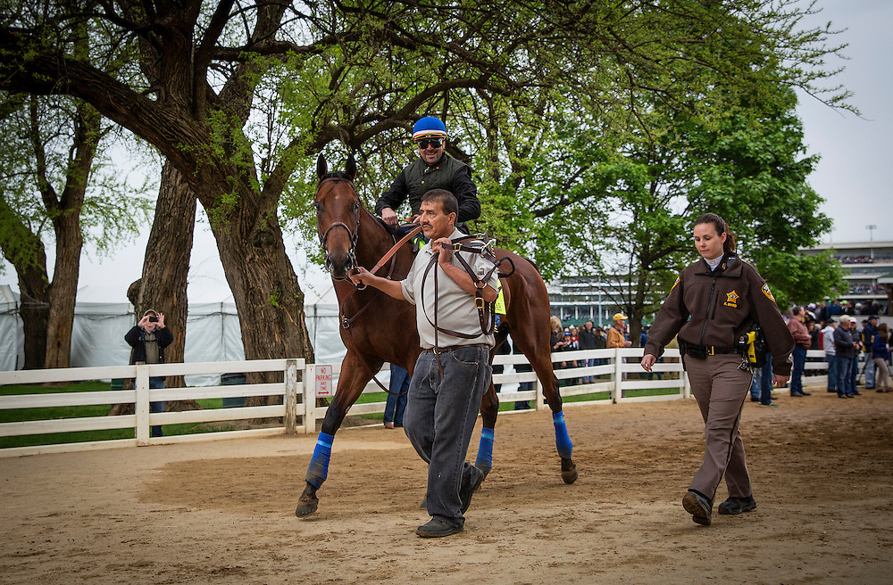 April 30, 2015: American Pharoah is escorted by a security guard after coming of the track in preparation for the Kentucky Derby at Churchill Downs Louisville Ky. Alex Evers/ESW/CSM