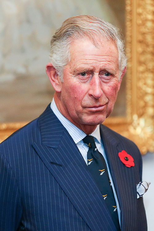 Prince Charles, Prince of Wales,looks on during a State Reception at Government House, Wellington, New Zealand, Wednesday, November 04, 2015. Credit:SNPA / Getty, Hagen Hopkins **POOL**