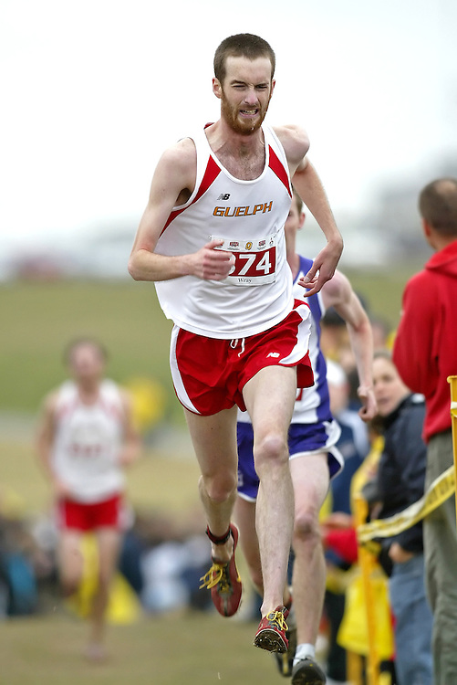 (Kingston, Ontario -- 14 Nov 2009)  NIGEL WRAY of the University of Guelph runs to 11 place at the  2009 Canadian Interuniversity Sport CIS Cross Country Championships at Forth Henry Hill in Kingston Ontario. Photograph copyright Sean Burges / Mundo Sport Images, 2009.