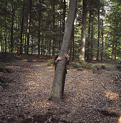 May 09, 2007 - A man standing behind a tree with arms around it in the forest.. Model Released (MR) (Credit Image: © Cultura/ZUMAPRESS.com)