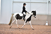 24 - 12th Nov - Dressage