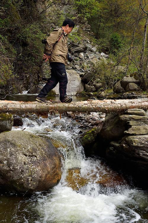Photographer Chen Jianwei, Tangjiahe National Nature Reserve, NNR, Qingchuan County, Sichuan province, China