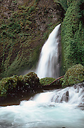 One of many waterfalls that dot the road between Portland and Hood River. This maybe Horse Tail falls. A Scan from a Kodachrome original.