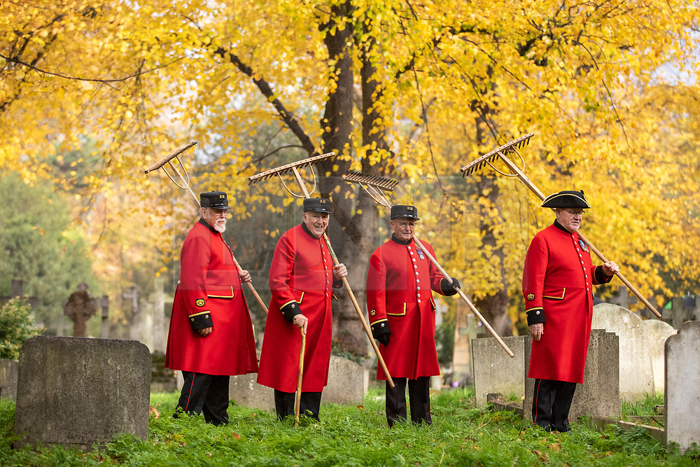 © Licensed to London News Pictures. 07/11/2018. London, UK. Four Chelsea Pensioners carry rakes in Brompton Cemetery as they begin the creation of a permanent wildflower meadow at the site of the Chelsea Pensioners' monument, as a tribute to the 2,625 Pensioners buried there. Photo credit: Rob Pinney/LNP