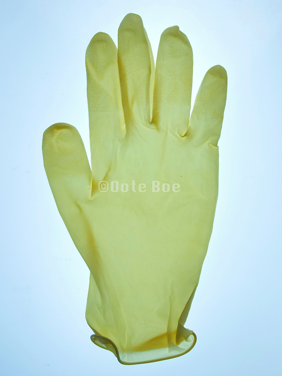 still life of a latex glove