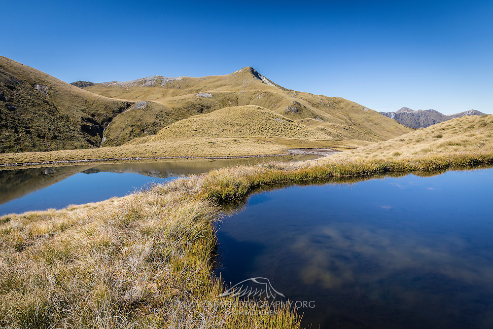 Blue tarns among the golden tussock, Mt Burns, Fiordland